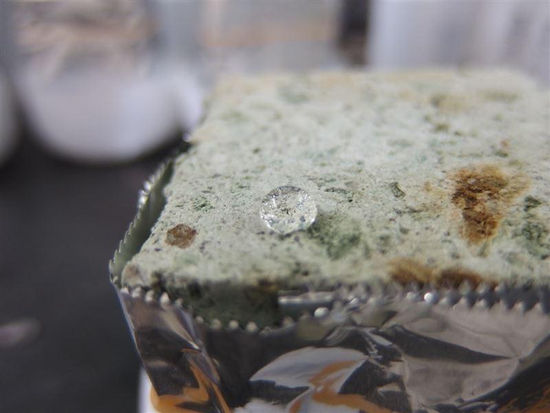 撥水コーティング剤で石材強化、文化財保護に生かす