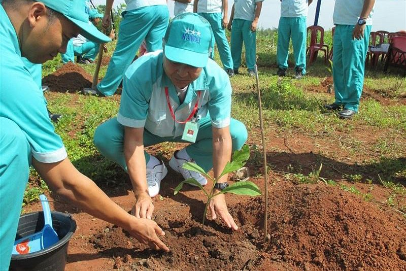 河合楽器が植林活動、「素材」である木を大切に