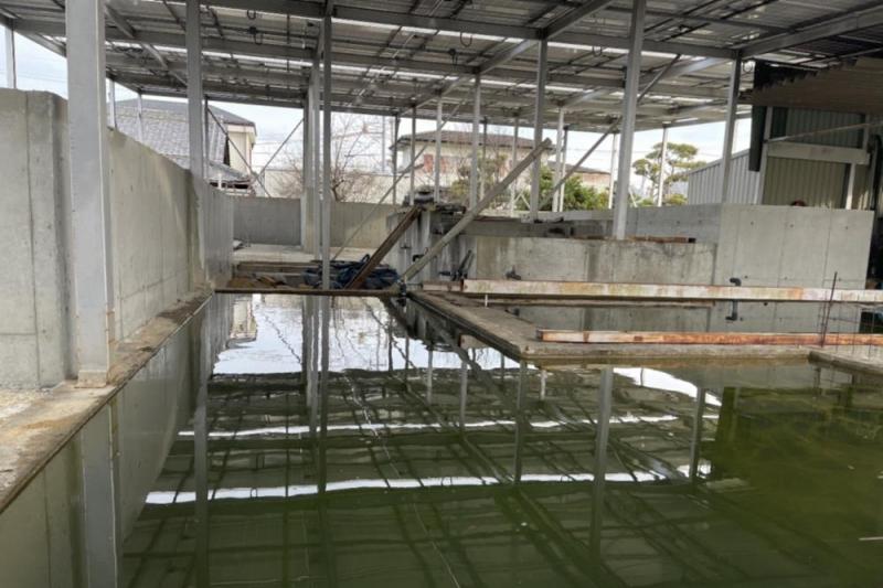 泉佐野市のタオル企業が挑戦、工場排水の無害化技術を農業と養殖に